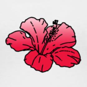 hibiscus red CU